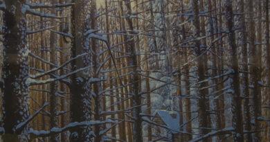 Выставка картин сахалинской художницы в Невельске