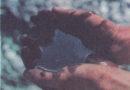 Американские байки: работающим вахтой посвящается. Дневники бездельников или Двадцать восемь дней радости. День Карты.