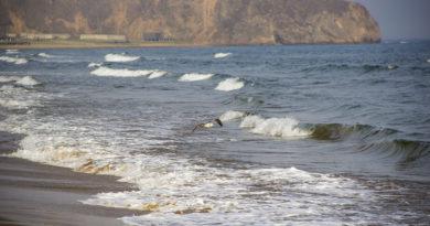Кто же посолил море (Почему море соленое, кто знает?)