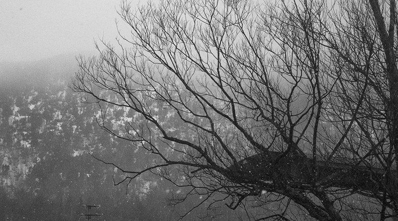 Дача весной или зимой — с чего начать